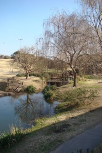 jardin botanico Córdoba